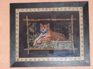 Tigre d'asie